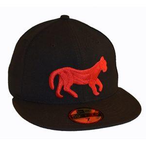 Detroit Tigers 1901-1902 Hat