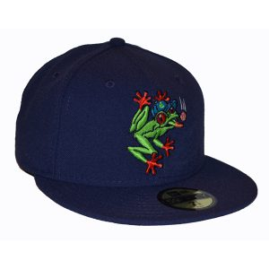 Everett Aquasox Home Hat