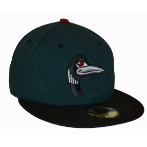 Great Lake Loons Road Hat