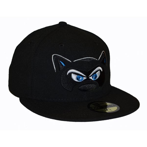 Hudson Valley Renegades Home Hat