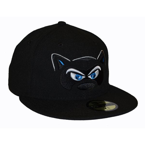 Hudson Valley Renegades Home Hat