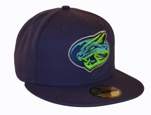 Lynchburg Hill Cats Home Hat